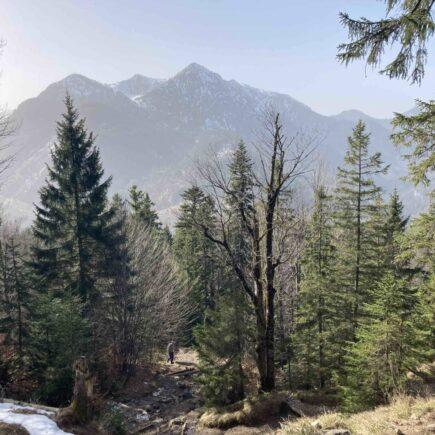 Wanderung Jochberg